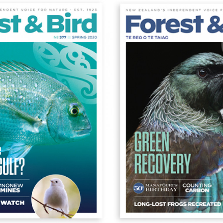 Forest & Bird magazine teaser image with two magazine covers