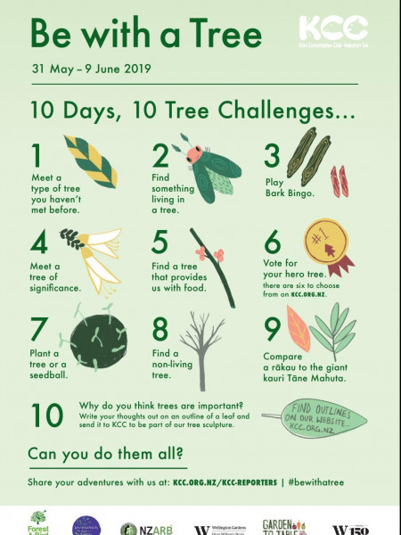 Be with a Tree - 10 days, 10 challenges