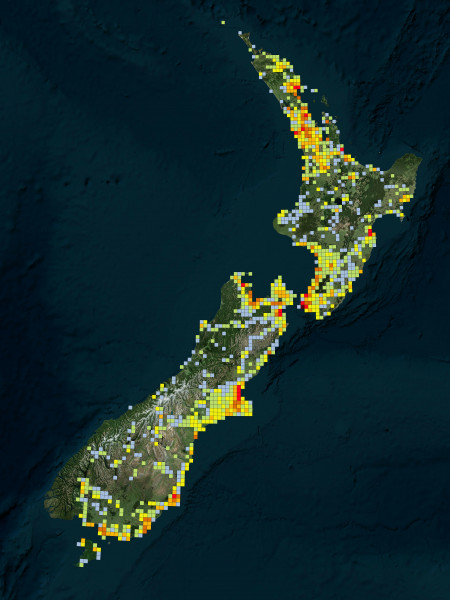 Map of New Zealand with coloured squares illustrating different bird species observed
