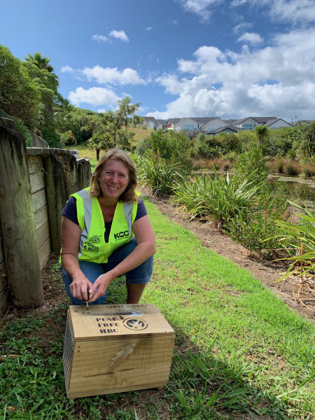 A Forest & Bird volunteer with a pest-free Hibiscus coast Backyard trap