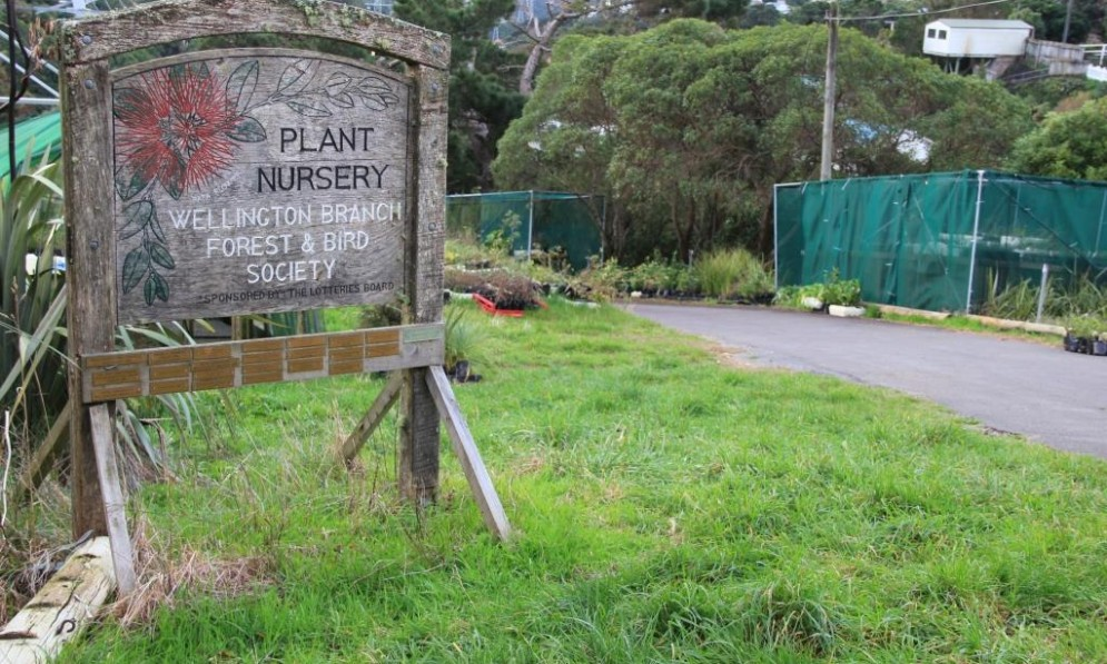Wellington Plant Nursery - Forest and Bird