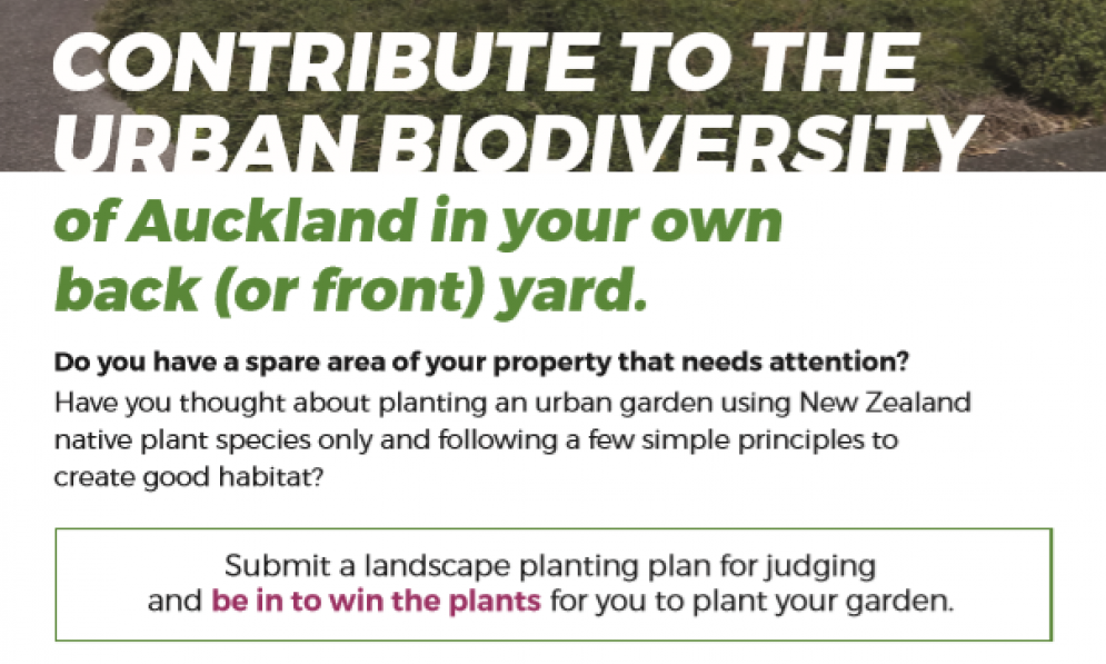 Auckland Central Branch is running an urban biodiversity garden design competition.