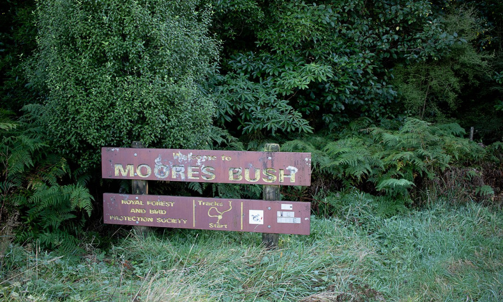 The sign for Moore's Bush in Dunedin