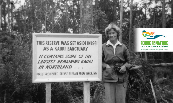 History project banner with old pic of Waipoua Forest kauri sanctuary with Miss Laurent next to a large sign