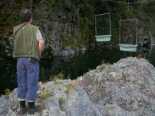 Brian inspecting harp-traps suspended over the Pelorus River