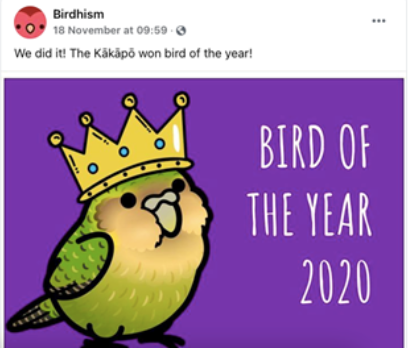 Birdhism Facebook page posts about Bird of the Year 2020