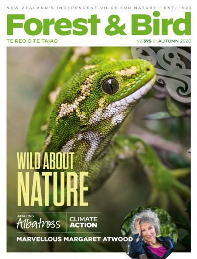 Forest & Bird Autumn 2020 magazine cover featuring a jewelled gecko