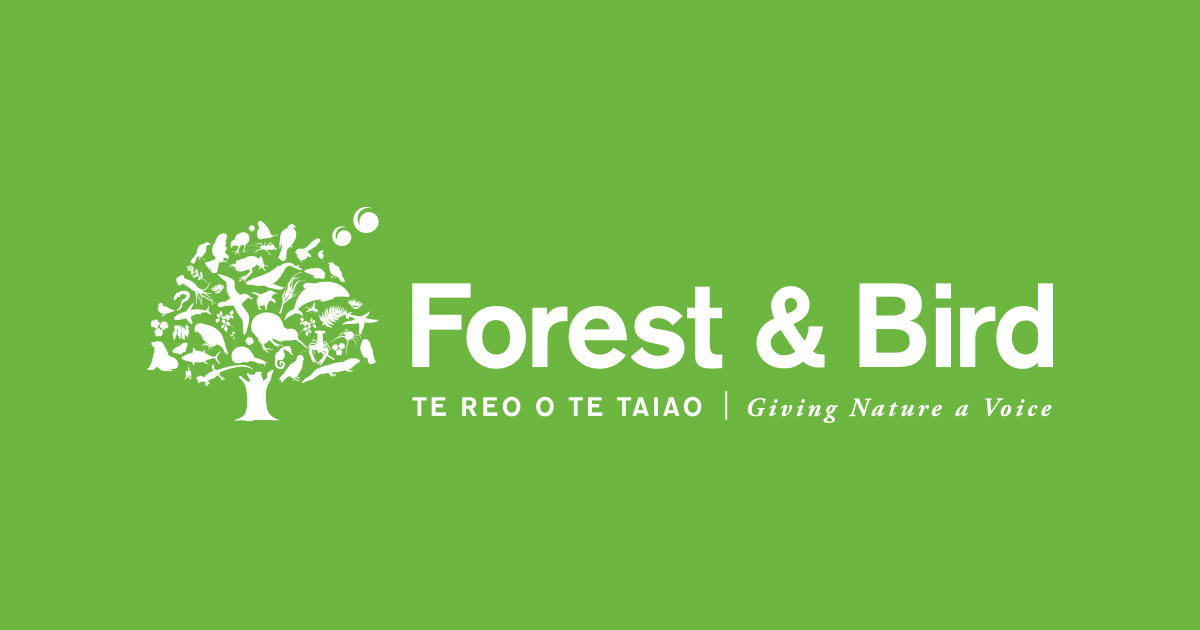 Image for forest and bird